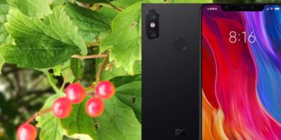 Xiaomi Mi 8 zoom and macro features
