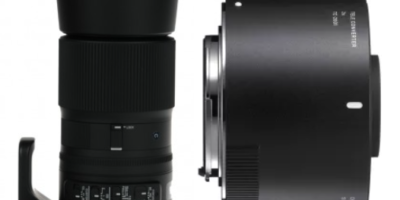 Sigma teleconverter 2x TC-2001 and Sigma 150-600mm Contemporary lens