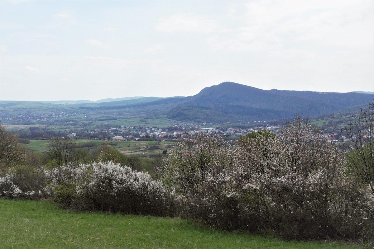 Cergowa Mt